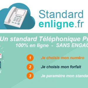 Standardenligne.fr : Toutes les fonctionnalités d'un standard téléphonique pro, sur votre mobile !