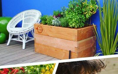 HautPotager : Votre kit potager prêt à planter !